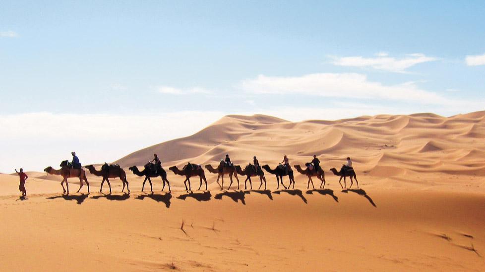 Chleuhs du Maroc ou… d'Allemagne ?